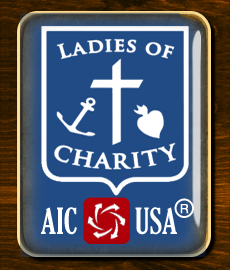 LCUSA Lapel Pin- New! 1.25 by 1 in